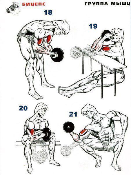 best 25  kettlebell arm workout ideas on pinterest