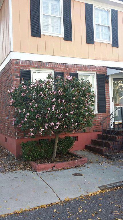 Townhome vacation rental in Harleston Village, Charleston, SC, USA from VRBO.com! #vacation #rental #travel #vrbo