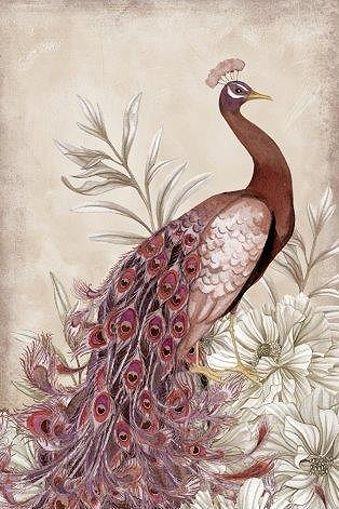 Nicole+Tamarin:+Mauve+Peacock+I+Fertig-Bild+40x50+Wandbild+Blumen+Pfau+