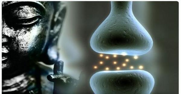 Un scientifique explique que la méditation modifie le cerveau Luttez-vous avec un esprit de singe comme moi? Est-ce que votre cerveau est aussi un peu instable, agité, capricieux, lunatique, fantaisiste, inconstant, confus, indécis ou incontrôlable? C'est la définition de «l'esprit de singe » qui m'a été attribuée! Si vous avez besoin de plus de motivation… En lire plus »