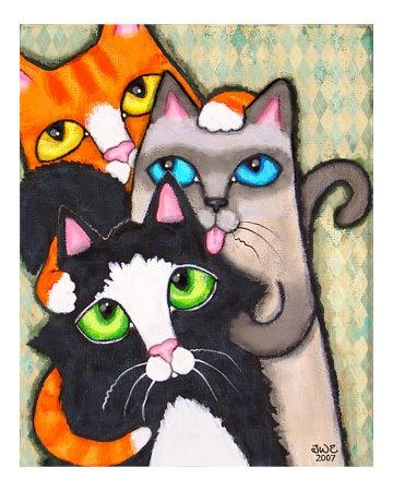 :-)Cat Art, Feline Art, Kitty Cat, Tuxedos Cat, Tuxedo Cats, Cat Eye, Eye Colors, Pets Photos, Cat Lovers