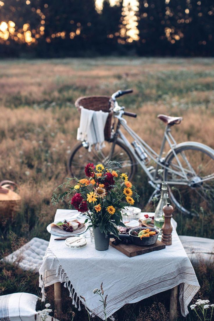Summer Picnic in the Countryside with Le Rustique