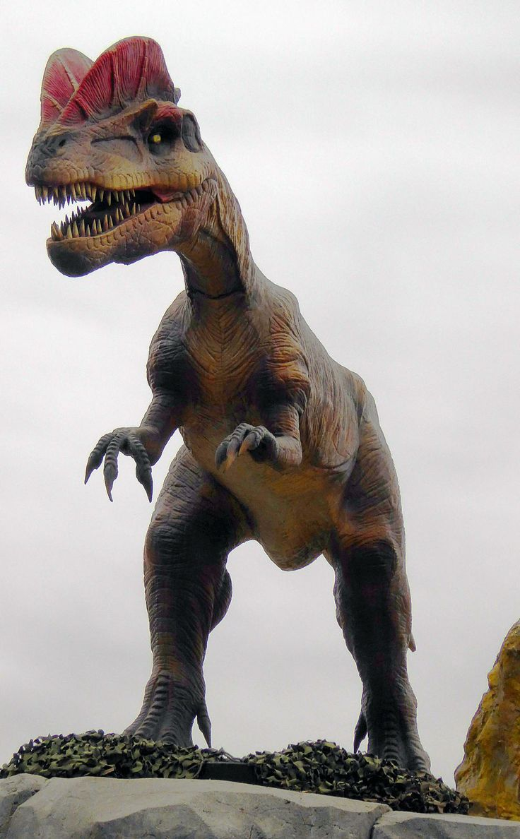animatronic dinosaurs at the Prehistoric Park in the Calgary Zoo