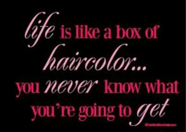 Quotes For Hair Spa: 25+ Best Ideas About Salon Humor On Pinterest