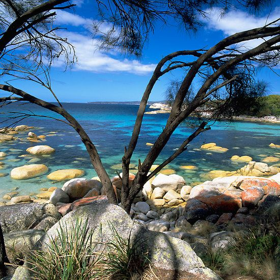 ~~ Blue Waters, Bay Of Fires, Tasmania, Australia by David Jamrozik~~