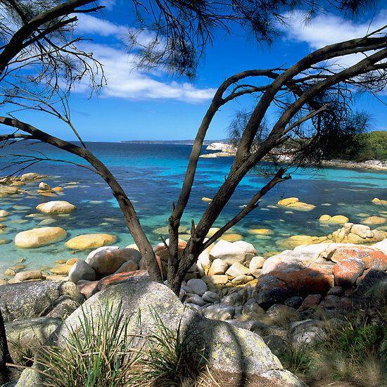 ~~ Blue Waters, Bay Of Fires, Tasmania, Australia by David Jamrozik~~
