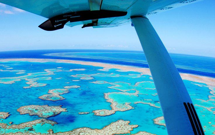 road-trip-australie-enfant-barrière-corail