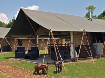 Ten luxury tented lodges are situated overlooking the elephant paddocks and offer stunning views of the cheetah enclosure and across the Romney marsh to the Kent coastline.