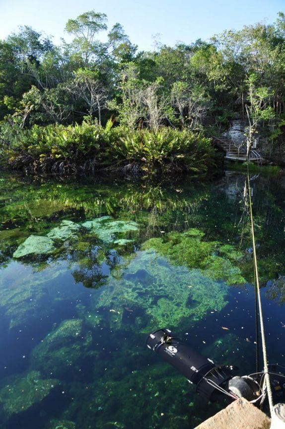 17 best images about cenote jardin de eden ponderosa on for El jardin del eden