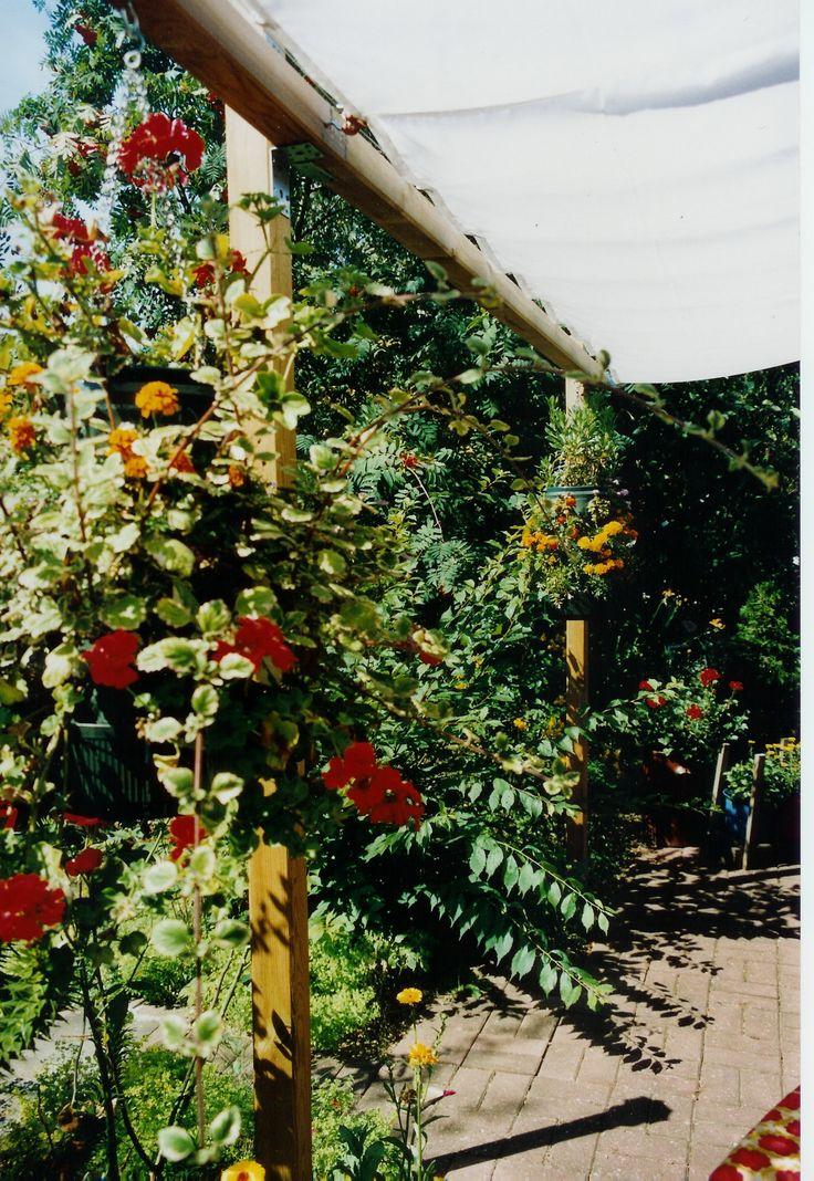 Eine Unterkonstruktion aus Holz (Pergola) kann Ihnen helfen, auf der Haus-Terrasse oder der Garten-Terrasse Sonnenschutz in Eigenhilfe zu bauen. Die Peddy Shield Seilspanntechnik eröffnet viele Möglichkeiten für Sonnenschutz in Selbstmontage. Mit einer Pergola und Sonnensegeln in Seilspanntechnik umgehen Sie die … Weiterlesen →
