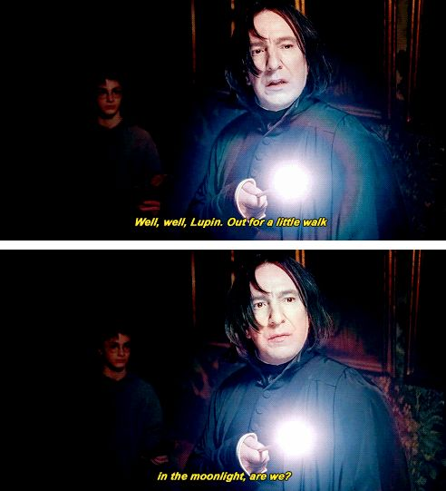"""harry potter~ Lupin """"No, I'm just totally wondering around in the dark after hours, just being my sneaky self and stalking Harry potter. You know what that's like, don't you Snape?"""""""