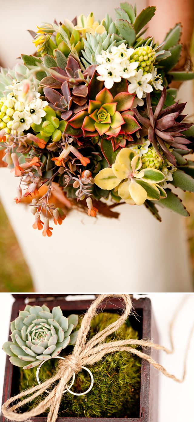 Highly textural succulent bouquet and ring bearer box.