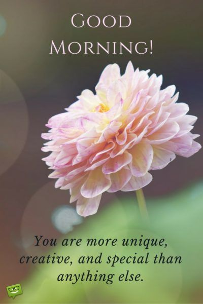 Good Morning. You are more unique, creative, and special than anything else.