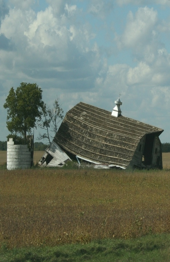 Fallen Barn & Silo With Tree Growing Up Out Of It  These make me SO sad, and they're everywhere! I wish I'd grown up in that era