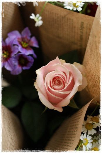 ■Flower noteのこと■ ■フラワーギフトのご注文方法■ ■Flower noteの作品集■ ■「小さなお花の教室 」■ ■現在募集中のレッスン■ …