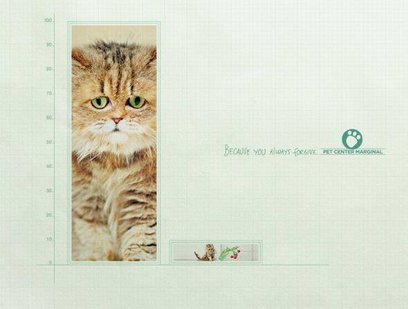 Pet Center Marginal: Rectangle