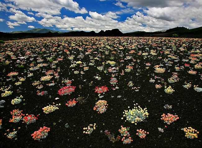 craters of the moon, idaho -