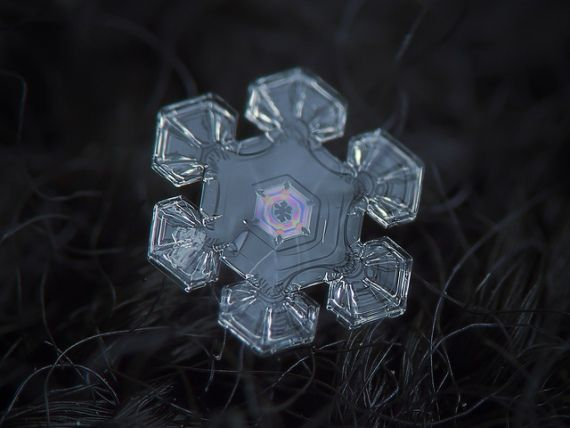 Zo ongelofelijk mooi zijn sneeuwkristallen - Nieuws - Droomplekken