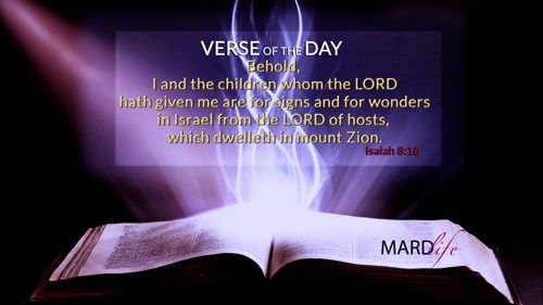 Verse Of The Day: Isaiah 8:18-20