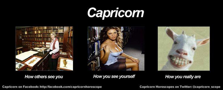 Funny Capricorn Meme