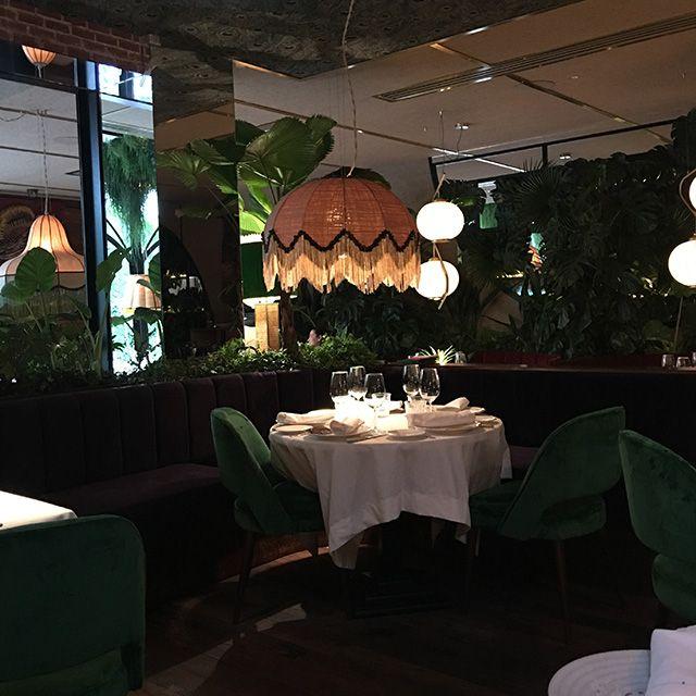 Love is in the food » Amazónico, nuevo restaurante de moda en Madrid