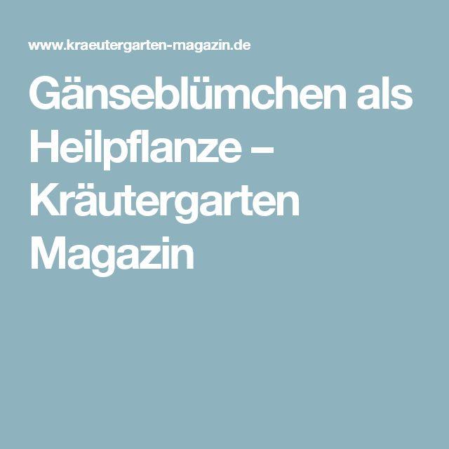 Gänseblümchen als Heilpflanze – Kräutergarten Magazin