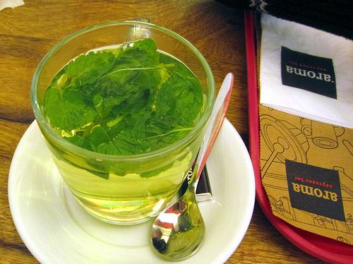 Hot or cold spearmint tea from your own garden plant.
