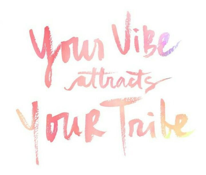 Your Vibe Attracts Your Tribe | quotes<3 | Pinterest | Honest ...
