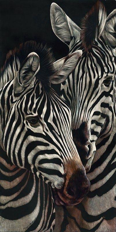 Zebra's!!! via: thegiftsoflife