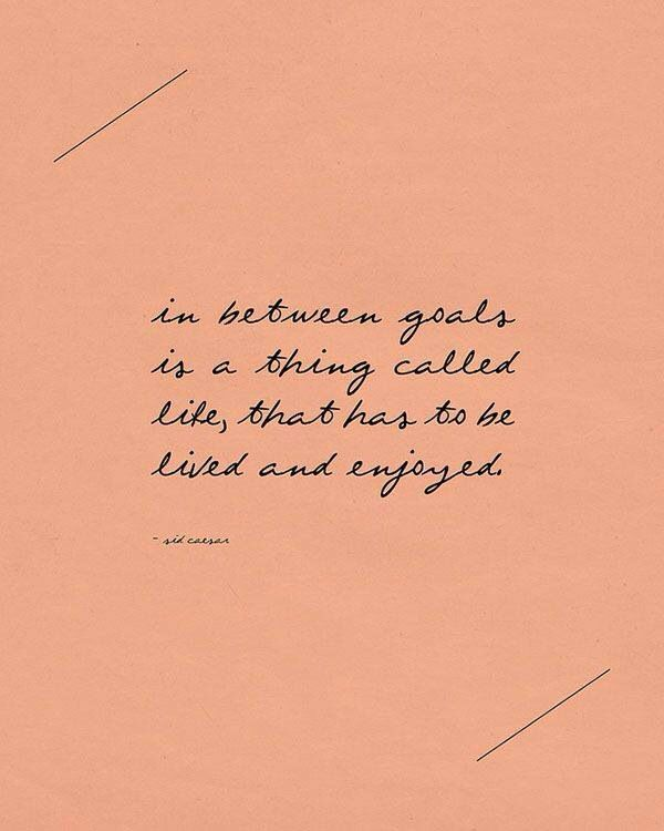 In between goals is a thing called Life that has to be lived and enjoyed.