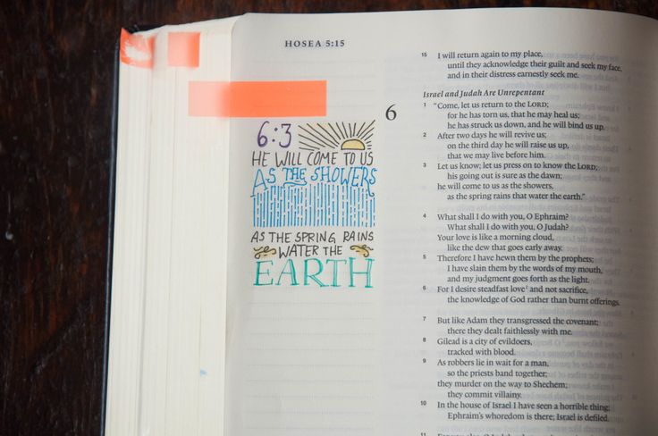 How to start Bible journaling for beginners! - Sara Laughed