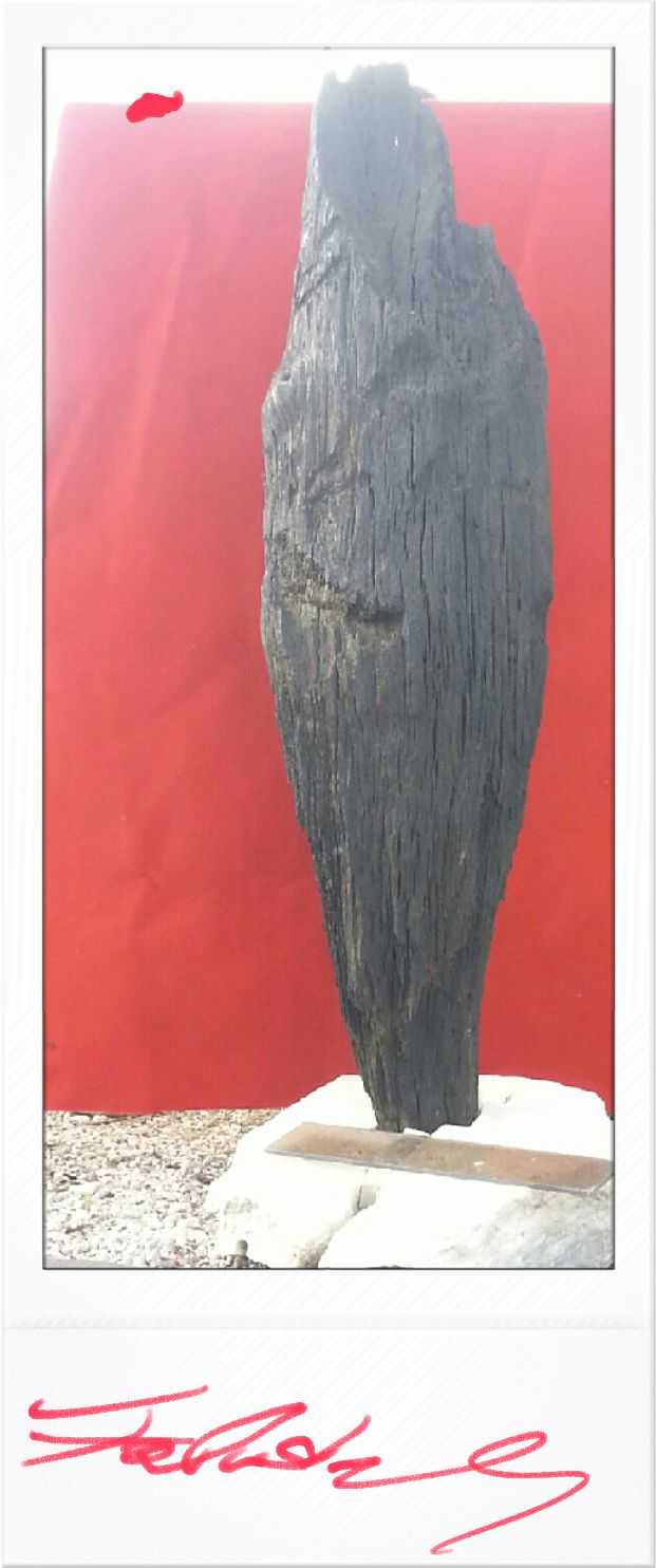 The black oak column
