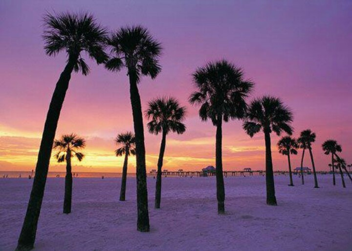 Clearwater Florida sunset. One of my favorites places in FL. Beautiful.