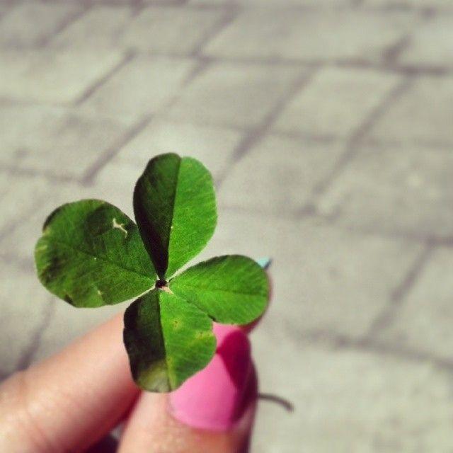 Good luck! http://tiki-tiki-kosmetyki.blogspot.com/2014/06/czerwiec-w-zdjeciach.html czterolistna koniczynka four leaved clover