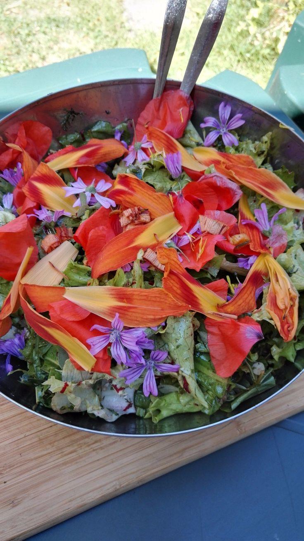 Une salade de fleurs.