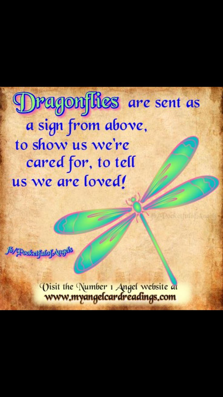 17 best ideas about dragonfly meaning on pinterest dragonfly quotes dragonfly tattoo and tat. Black Bedroom Furniture Sets. Home Design Ideas