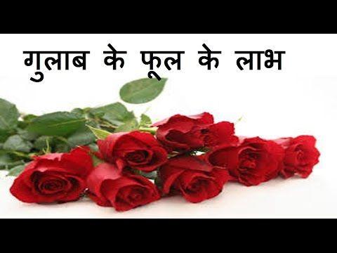 गुलाब के फूल के फ़ायदे | Health & Beauty Benefits of Rose Flower | Gulab ke Fayde - YouTube