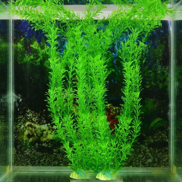 2016 30cm Underwater Artificial Plant Grass for Aquarium Fish Tank Landscape Decor-in Decorations from Home & Garden on Aliexpress.com | Alibaba Group