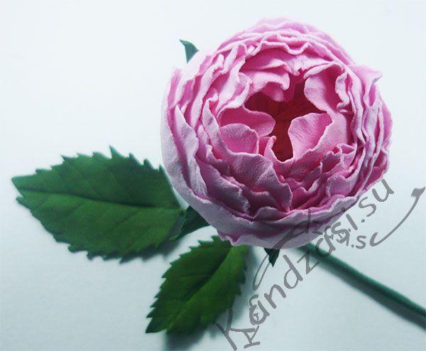 Мастер-класс изготовления мелкоцветковой розы Raubritter из фоамирана, поэтапные фото