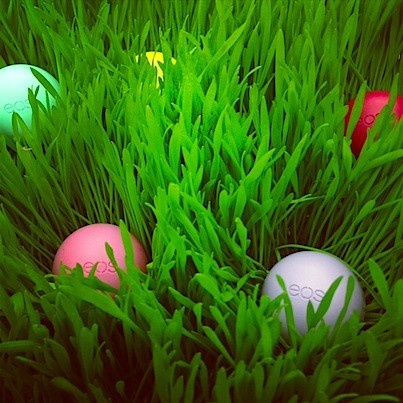 Nothing like an Easter eos hunt