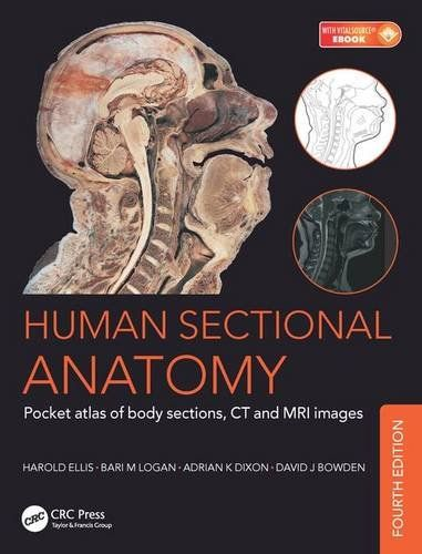 Superb Human Sectional Anatomy Pocket atlas of body sections C https
