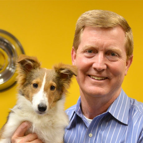 Steve Shell, The Vet Whisperer (AKA VP of Veterinary Channel Development at Petplan pet insurance) with Dillon the Shetland Sheepdog