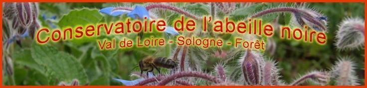 Conservatoire de l'abeille noire en Val de Loire - Sologne - Forêt   parrainage deductibles des impots