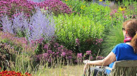 małe-ogrody-zdjęcia-galeria-skalne-ogrodów-moj-ogrod-zimowy-piekny-ogrod-ogrody-galeria-zdjęć-jak-zaprojektowac-ogrod-naglowek
