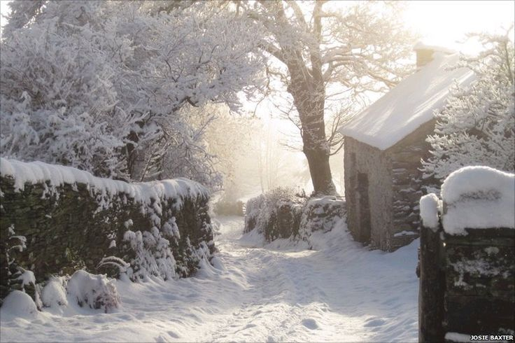 Cottage in Blawith, Cumbria, England by Josie Baxter