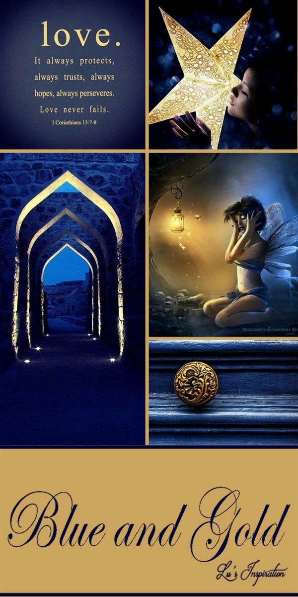 BLUE AND GOLD ~~