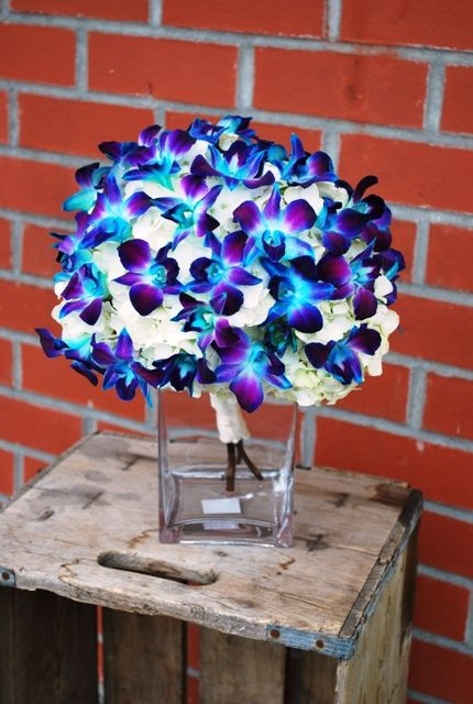 This is my flower for my wedding... possible centerpiece? Love my choice in the blue and purple orchids... can't wait for June!!!