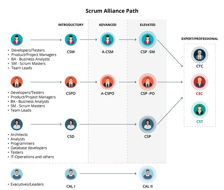From This Infographic We Can See The Scrum Alliance Career