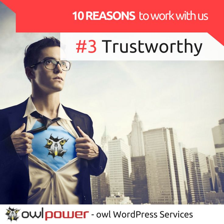 You need somebody extremely competent to be in charge of your #WordPress #maintenance, available non-stop. Trust in #owl power!