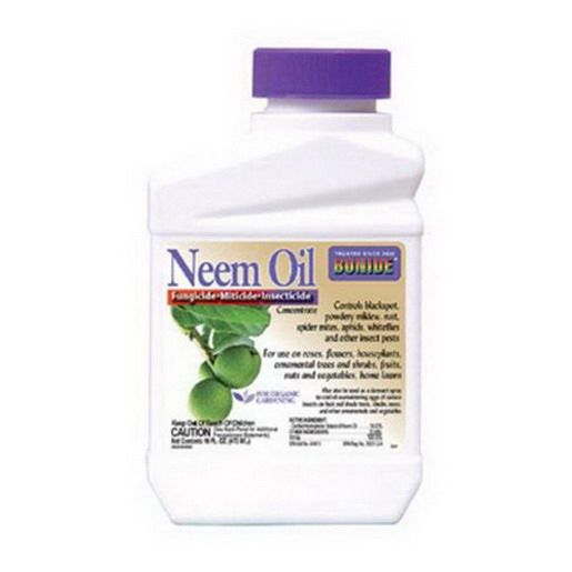 Bonide Neem Oil Concentrate, 1 pt, Brown | Vegetable & Fruit Insecticides | Animal and Pest Control | Lawn & Garden | Outdoor | Osh Categories | Orchard Supply Hardware Store